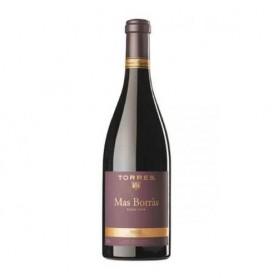 Mas Borras Espagne Pinot Noir 2010 Torres
