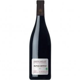 Loire Demi bouteille de Saumur Champigny le Boisclair 2012 Joseph Mellot