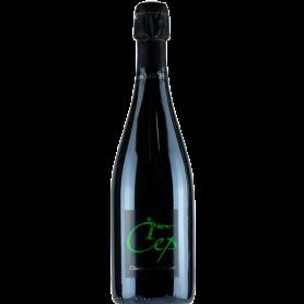 Champagne Jean Michel Cuvée Cep Extra Brut